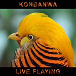 Konbanwa - Live Flaying
