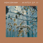 Nonconnah - winter