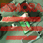Remora - Ambient Ping Things