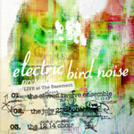 Electric Bird Noise: Live at The Basement